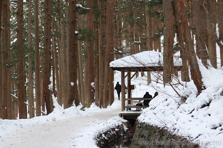 หิมะญี่ปุ่น